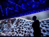 """傅盛挑战边界,猎豹""""跑""""进机器人丛林"""