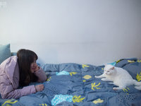 撸猫撸狗正流行丨钛媒体《在线》