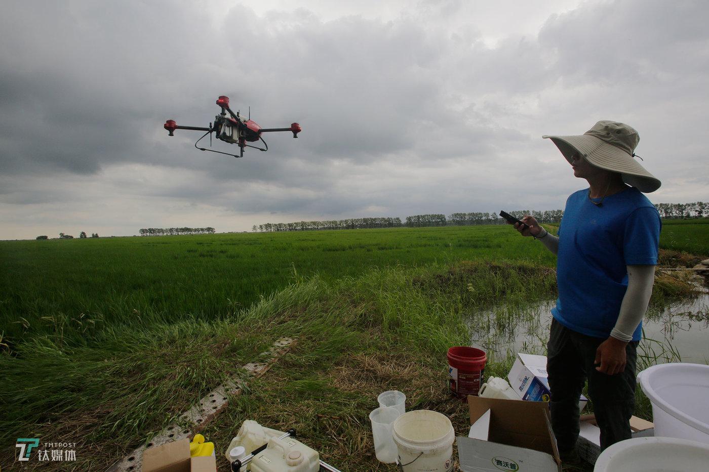 植保无人机2016年开始出现在当地,任维新去年进入这个行业,到现在当地已经有近10个品牌在竞争,作业价格不等,一般在6到8元每亩不等。