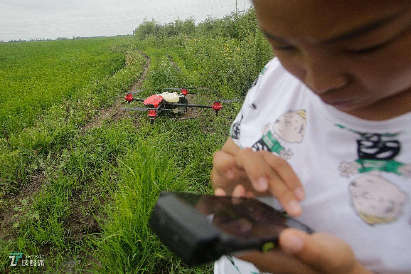 黑龙江同江,女飞手丹丹正准备启动她的植保无人机,为一户农户的水稻田进行喷洒作业。