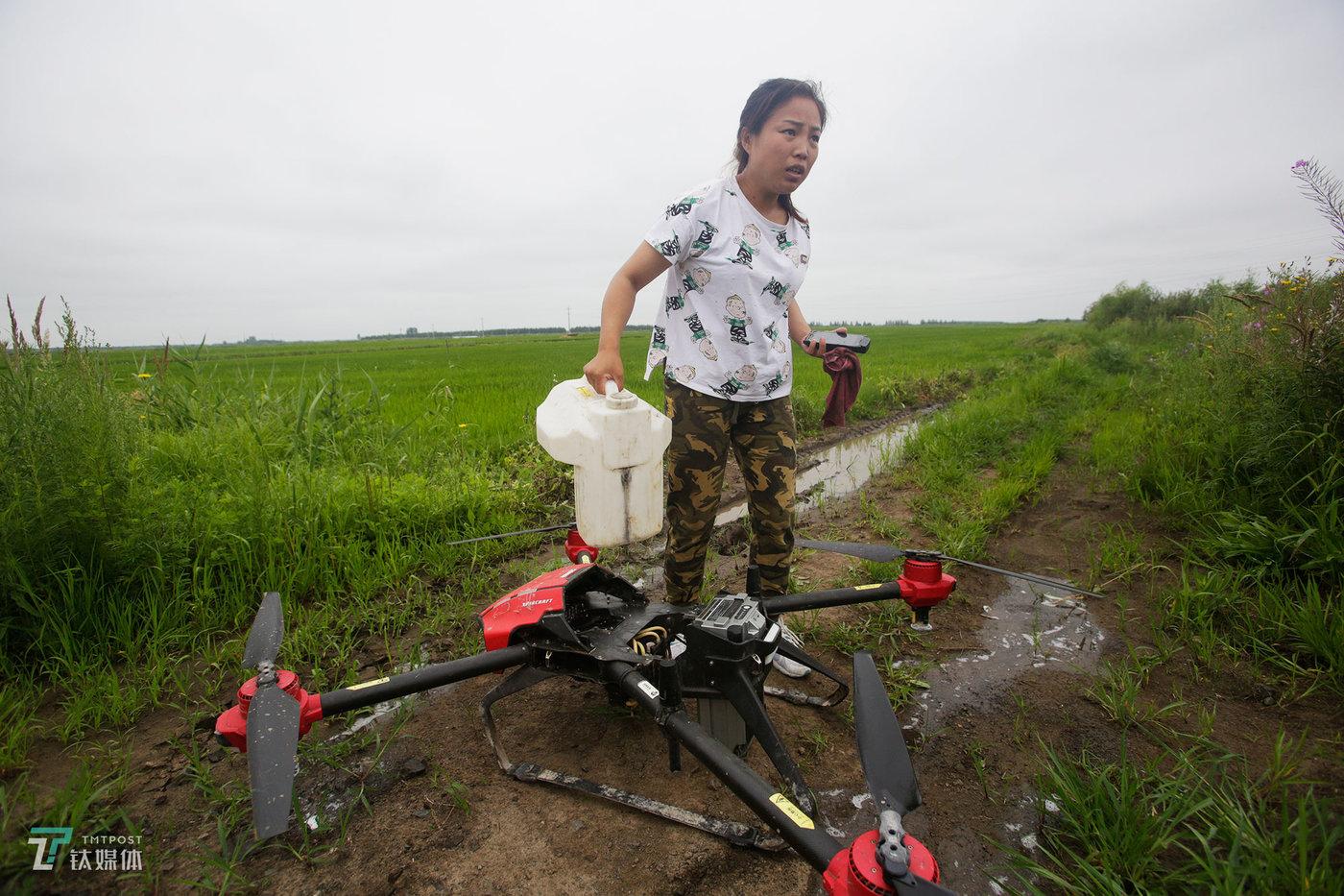 """作为一个女飞手,又天天在地里干活,她把自己当成了不折不扣的女汉子,换药、换电池、飞行、测地都不在话下。""""同江的价格低,4块钱一亩地,有的飞机2块钱一亩也飞。""""丹丹向钛媒体《在线》介绍,有些地主农户喜欢找便宜的来飞,飞完发现草没除干净,或者有的地方没喷洒到位,又不得不找价格贵但是作业质量高的团队来二次喷洒。"""