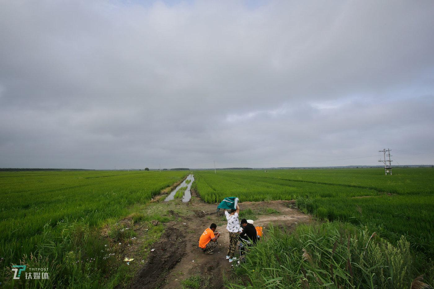 一块地的作业即将完成,大家在等待飞机返航。她家住在市区,每次来回下地都要花不少时间。她觉得自己是个农民,离不开土地、离不开农村。丹丹家有300亩地,她计划明年再租几百亩自己种,扩大规模,她还计划去读一读农业类的成人教育,学习农业技术,做一个跟父辈不一样的农民。