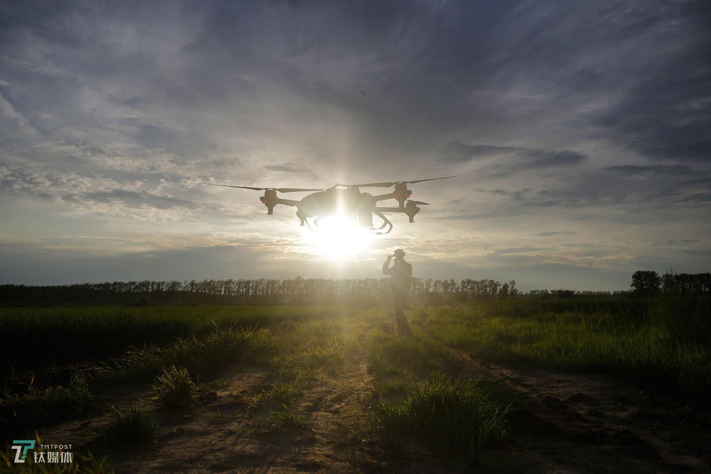 黑龙江绥滨,26岁的飞手张博正在操控一架极飞无人机起飞。