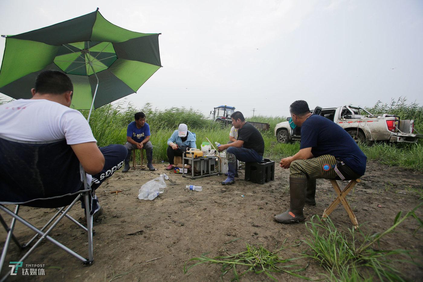 """一个地块的作业还没完成,其他等待作业的农户已经在""""排队""""等待林东旭。林东旭每天早出晚归,每个作业日要完成800亩的工作量,只要不下雨,工作量每天都饱和,农户一般都要提前两天预约。遇到订单特别多,尤其是闹病虫害的时候,林东旭还会外调飞机来帮助作业。"""