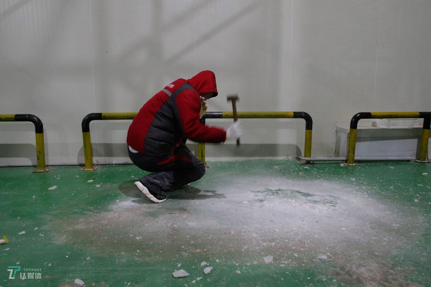 冷库通风系统滴下的水,在-18℃的低温中迅速凝结成冰,为了防止拣货员摔倒,一名冷库工人用锤子凿冰清理地面。