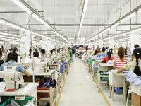 工厂的品牌梦,这次稳了吗?