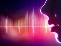 声音红利,被忽略的创业金矿