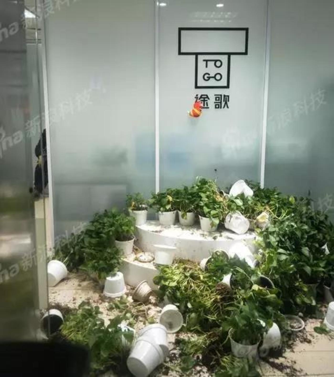 途歌办公室,门口的花坛被用户砸烂