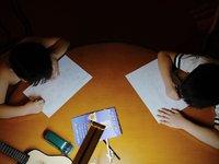 疯狂的小学生视频作业