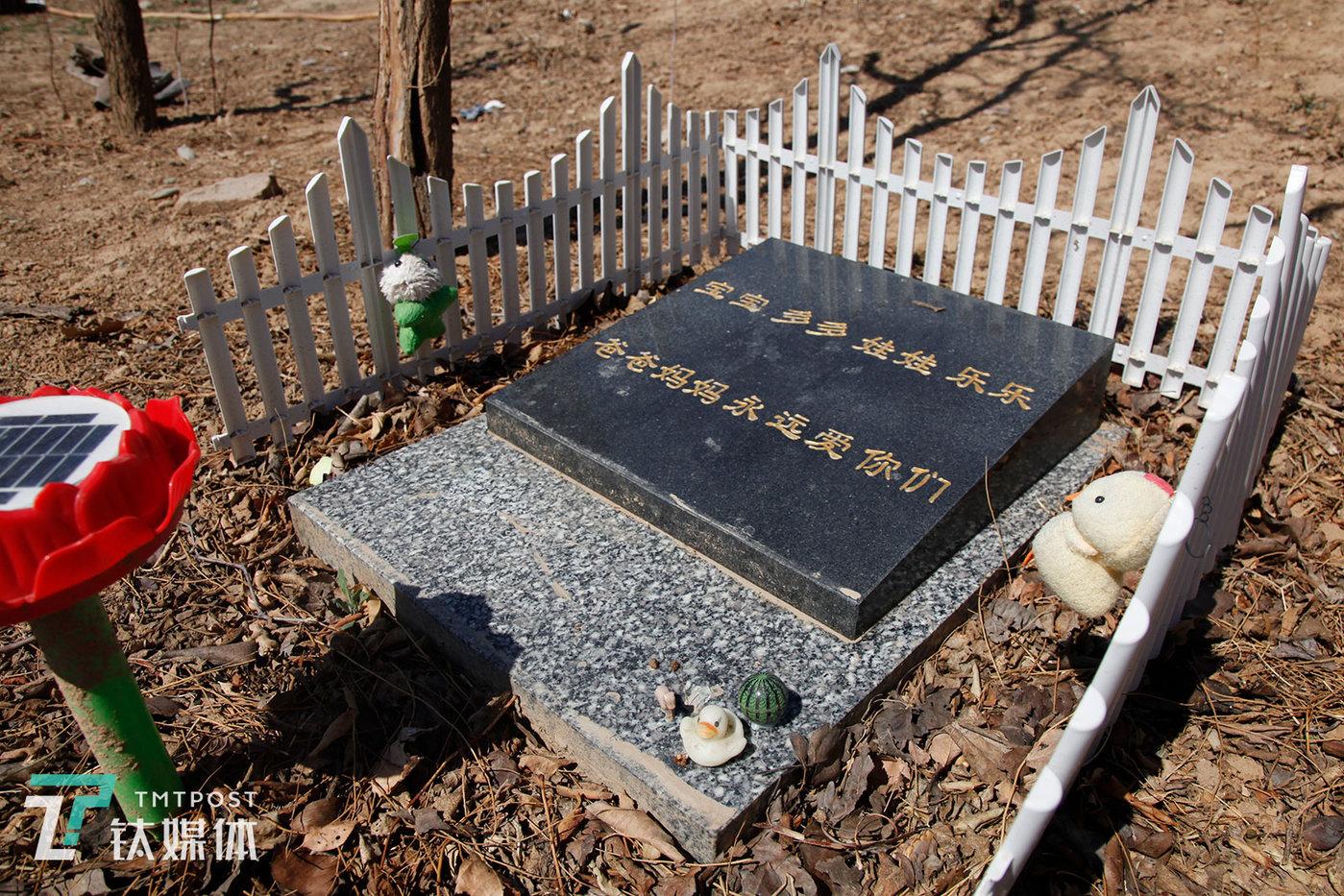 目前整个墓地共保存着30多只过世宠物的骨灰,经常有宠物主人前来探望,探望最勤的客人一个月会来两次。