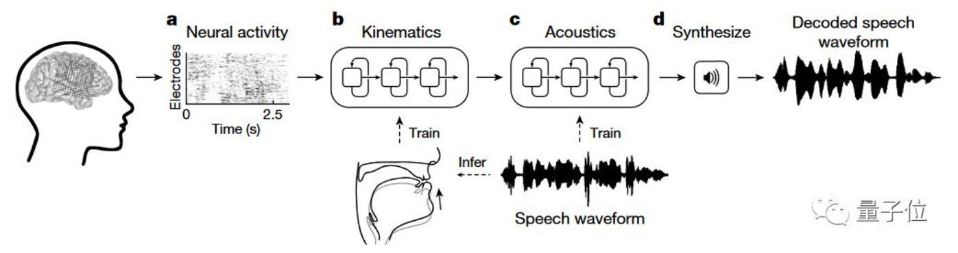 Nature:不开口就能说话,脑波直接转语音