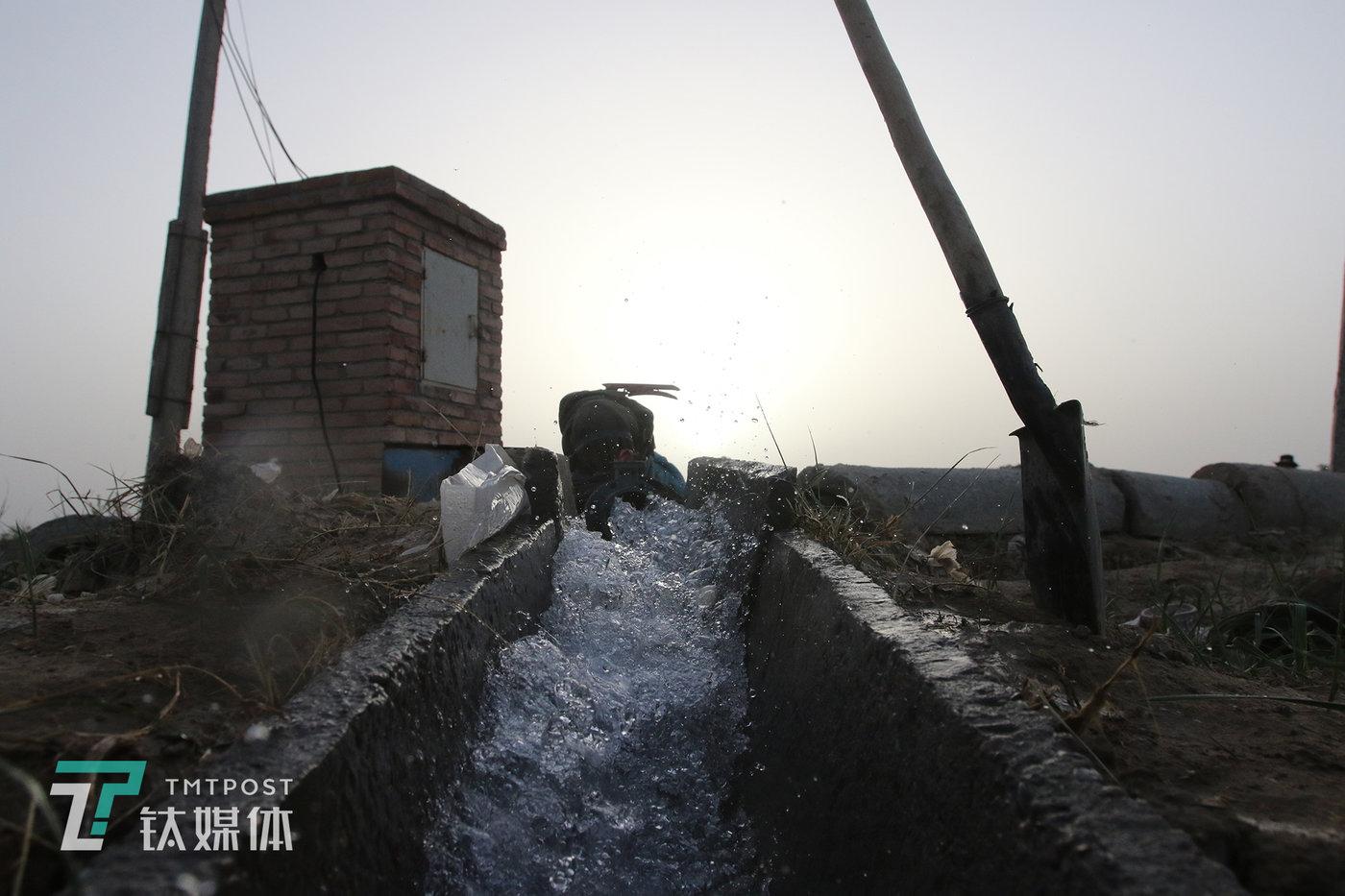 用于灌溉瓜田的井水。