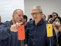 苹果无需设计师
