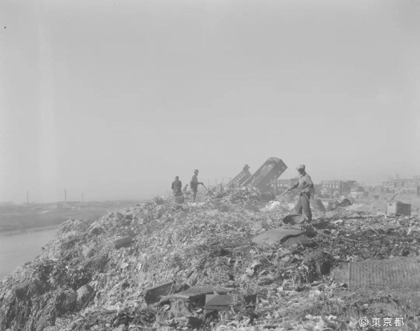 江东区梦之岛垃圾填埋场(图片来自历史资料)