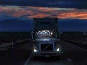 """最好的美国卡车司机,都是印度""""福建人"""""""