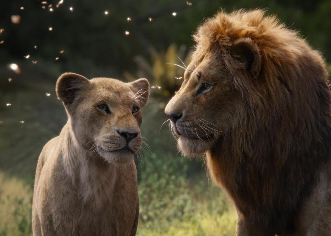 图片来源于《狮子王》