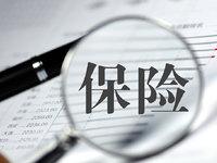 保险代理人的江湖:千万年薪,不被认可