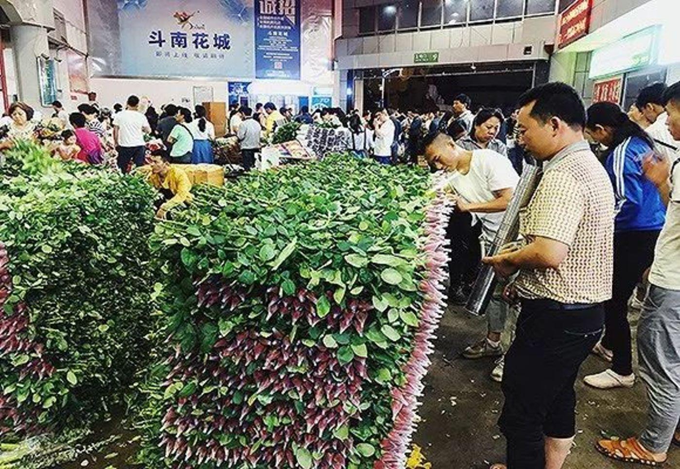 一支七夕玫瑰和四个男人:云南斗南的鲜花生意如何运转?