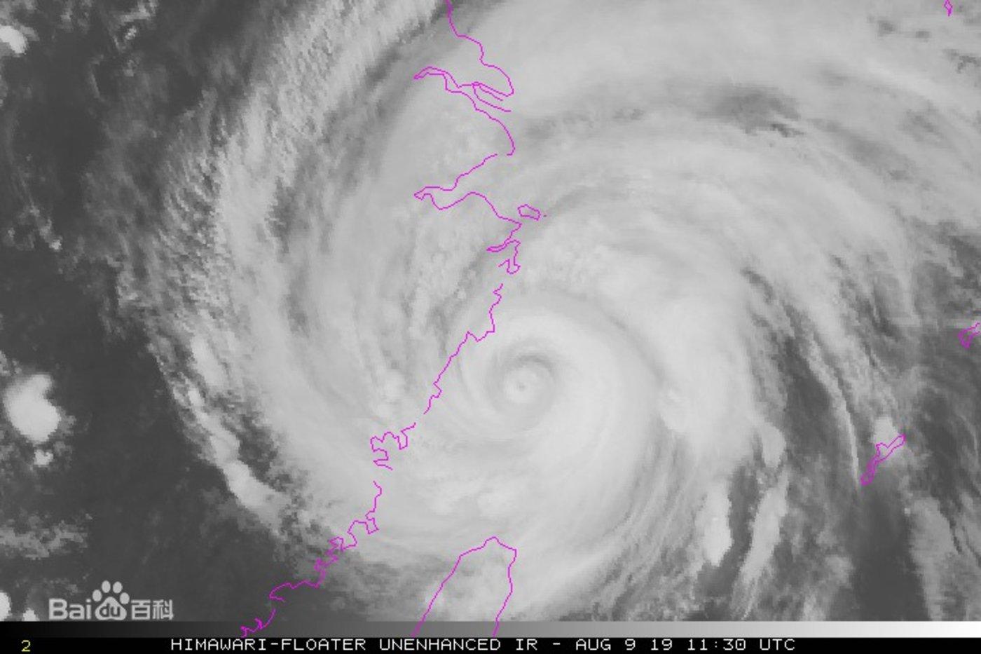 """台风""""利奇马"""""""