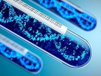 基因测序的硬件往事