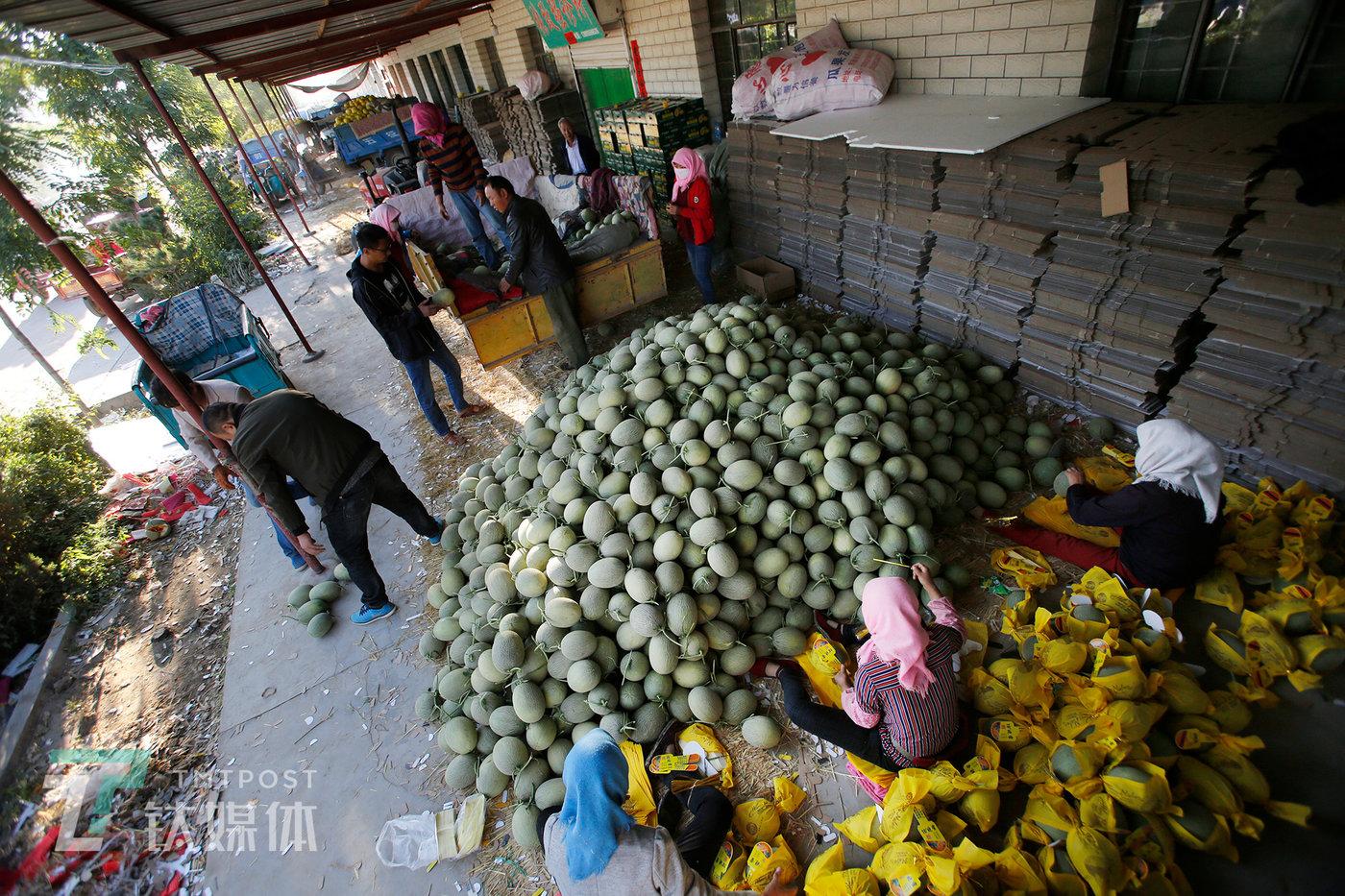 一位杭州水果收购商的档口,薛志明刚刚卸完一车瓜,包装工就开始打包装箱。