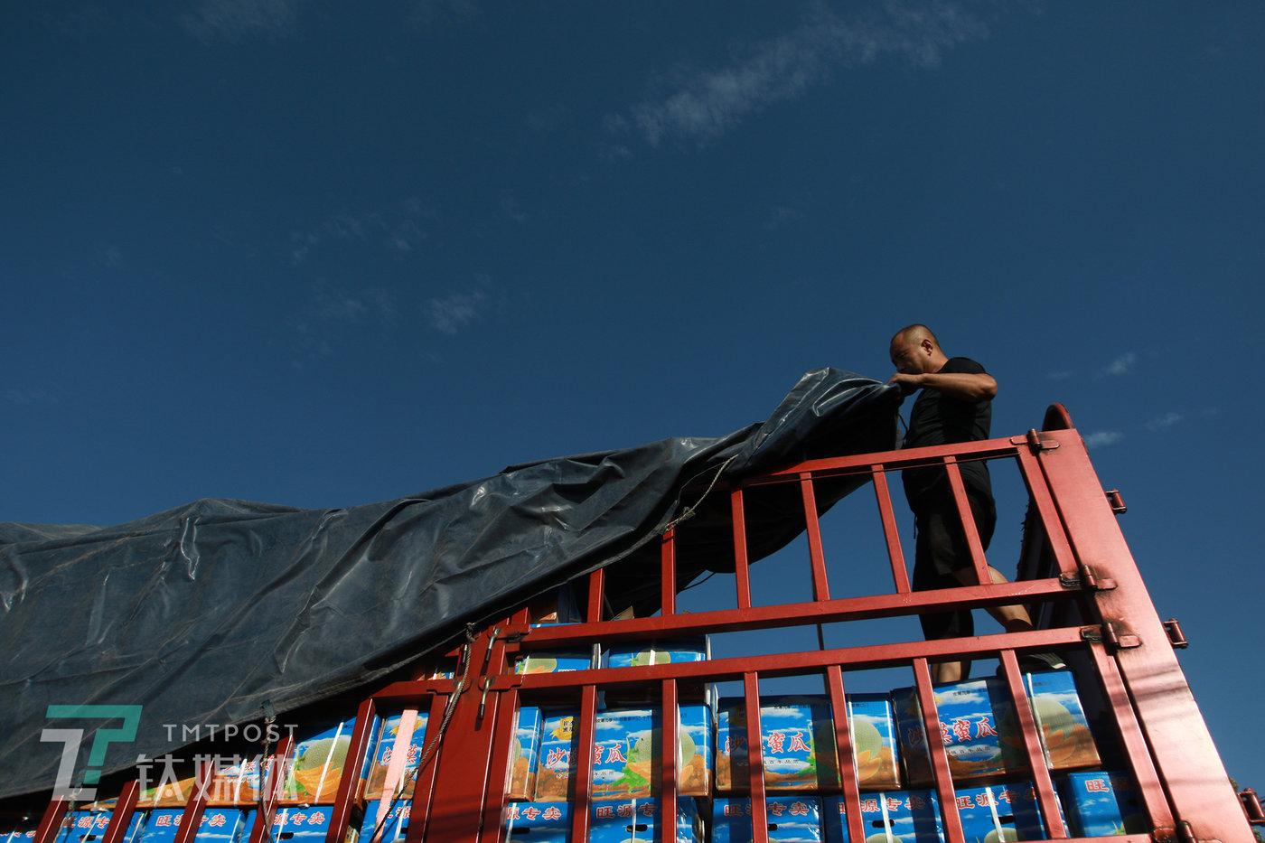 卡车车司机在给车盖油布。这一趟,他要载着18吨瓜,从民勤发车到武汉,1800公里路程,他一个人驾驶,要在36个小时内送达。