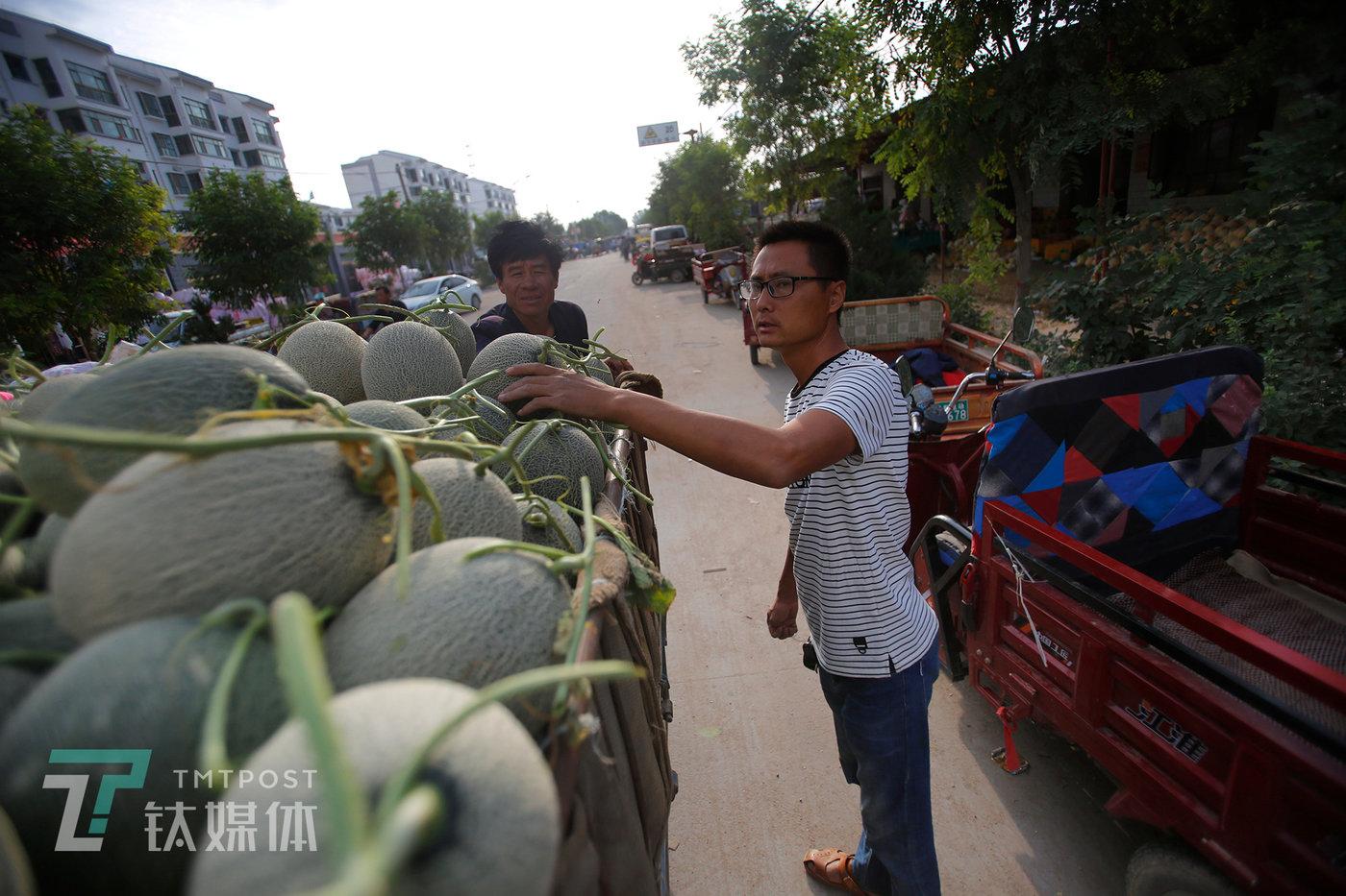 来自杭州的水果商老陈截住从瓜档门口经过的三轮车,开始跟瓜农商量价格。