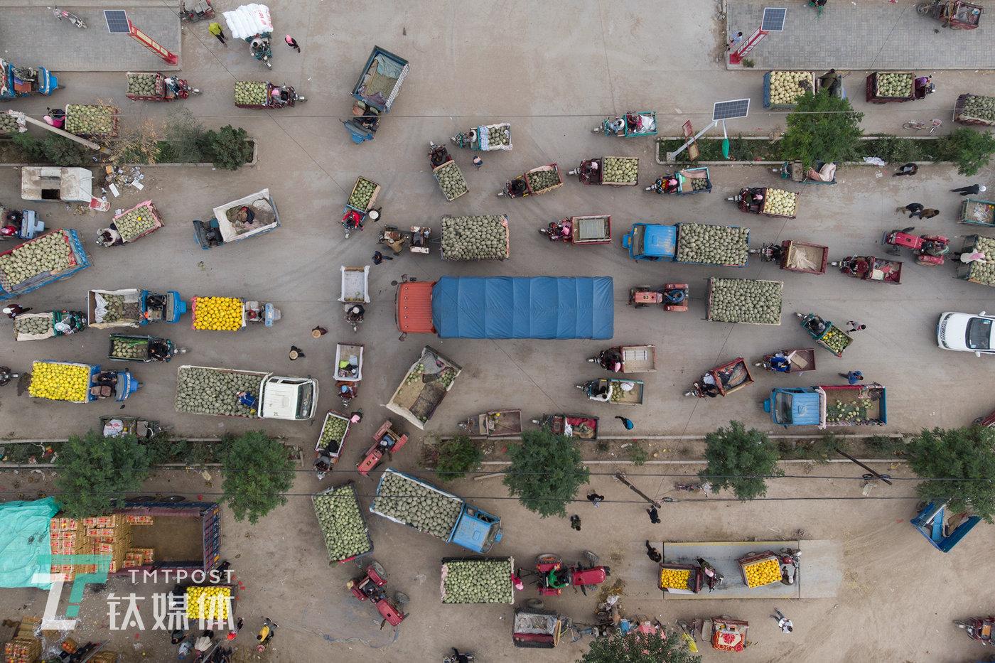 8月16日早上7点多,收成镇一条主干道上拥堵的车流。这中间有瓜农的三轮、拖拉机、小货车,还有外地来运瓜的卡车。