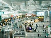 智能大交通时代,航班管家的坚守与蜕变 | 品牌