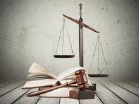 首部社交电商大数据报告重磅发布!基于1000份判决,详解社交电商刑事行政风险