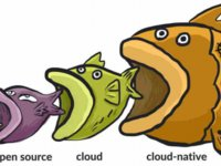 访PaaS服务商灵雀云:云原生正在成为数字化转型的驱动力