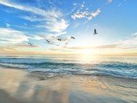 出海企业如何做战略选择和决策?