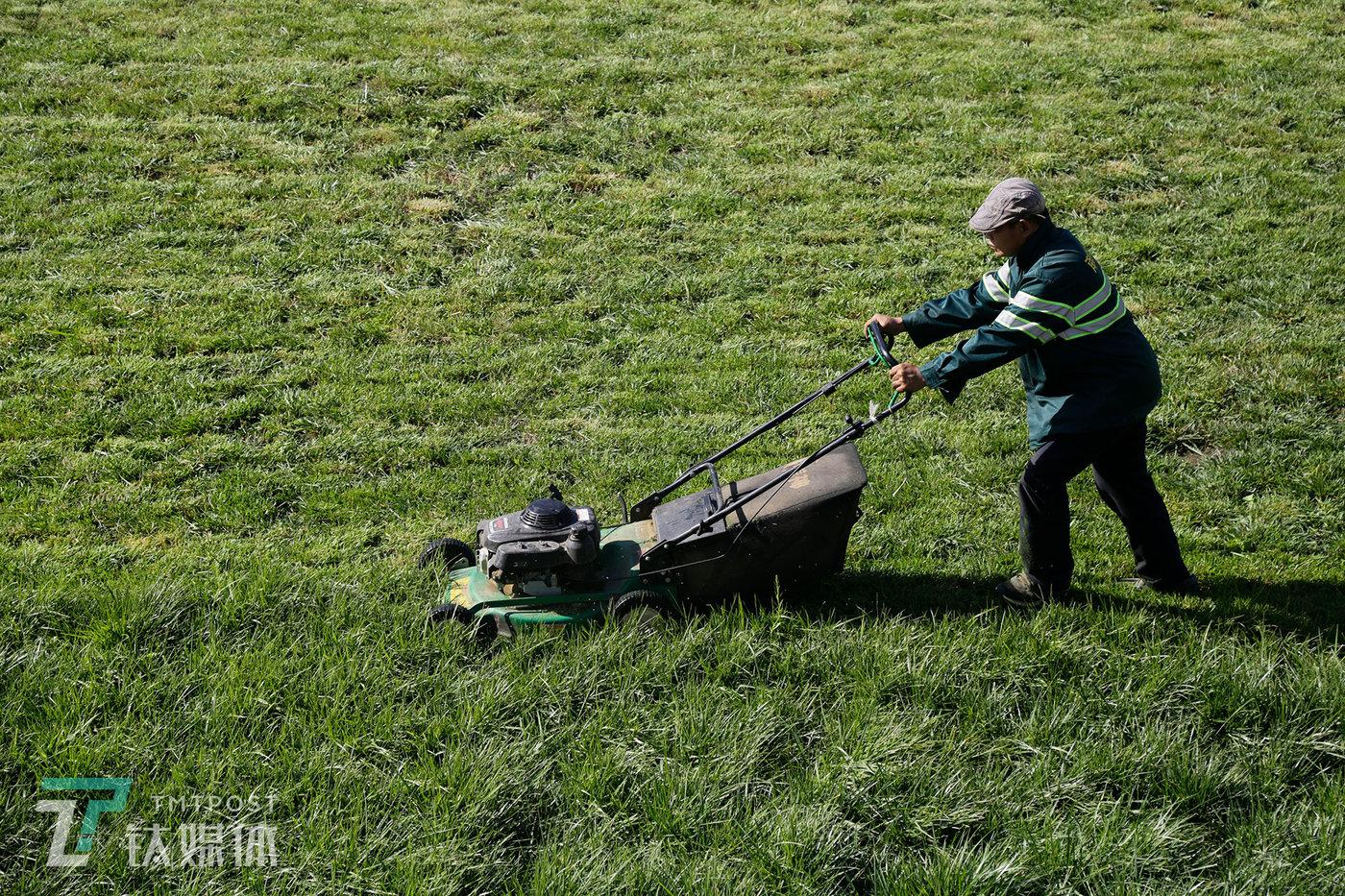 9月14日,北京大兴区,曾祺爸爸的父亲在修建一块草坪。