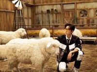 """SKP请来了""""一群羊"""",属于未来一代的百货商店长什么样?"""