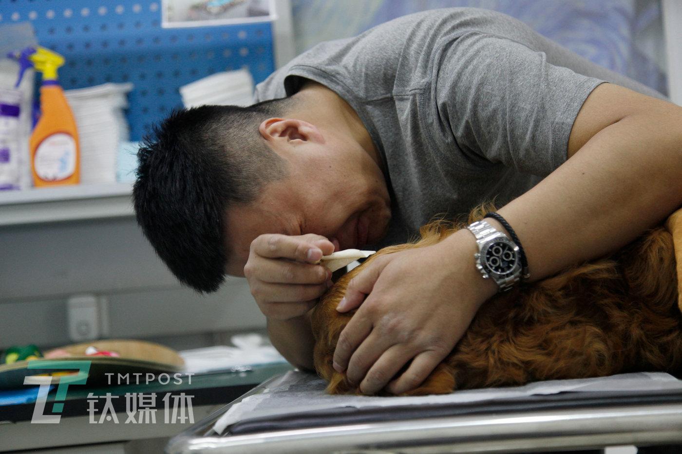 """清洁室,狐狸摸着失去温度的馒头,忍不住痛哭,那是他10分钟内第三次流泪。11年,这只狗陪伴主人走过""""失恋""""、""""父母去世""""等等难熬的日子。"""