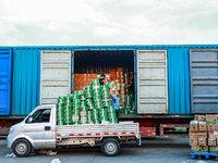 人力、物料、物流全部斷裂,400多種滯銷生鮮果蔬該如何突圍?