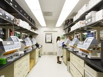 【前沿课堂】探索数字医疗生态下的新商业模式