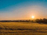 李志刚:农业迎来最佳创业时机