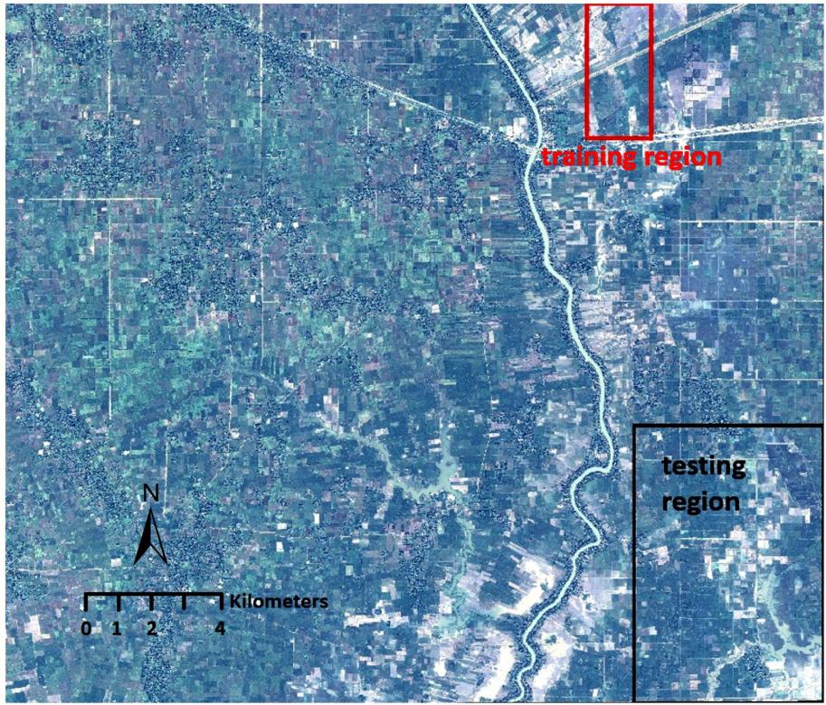 研究地点的卫星图像(100 平方公里)