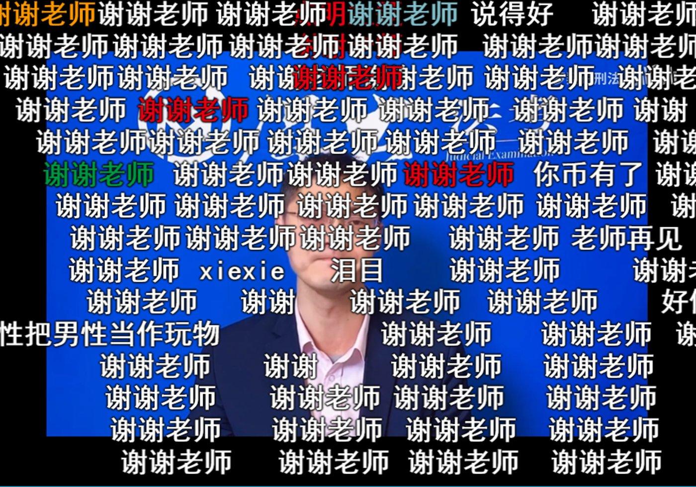 (罗翔《韩国N号房事件的罪与罚》视频截图)