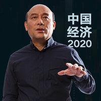 有声书系列 / 中国经济2020