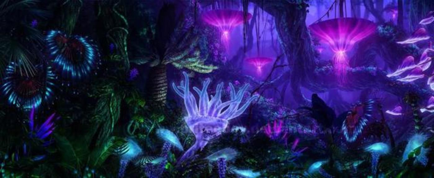 电影《阿凡达》中会发光的植物