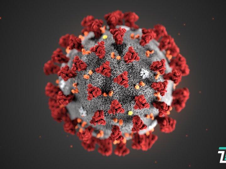 新冠病毒在国际上被正式命名SARS-CoV-2,命名乱象终止