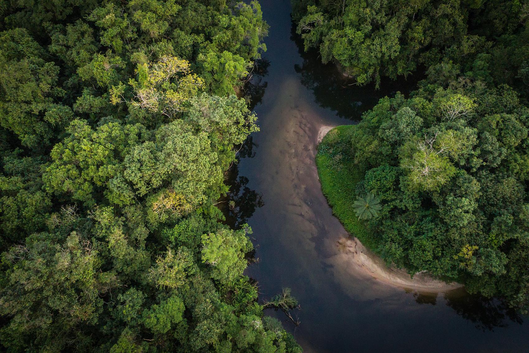 中国企业出海,拉美市场就是遍布食人鱼的亚马逊河