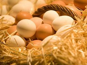 """从土鸡蛋到""""可生食""""鸡蛋,鸡蛋也有消费升级吗?"""