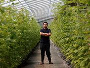 从荷兰回到张家口种树莓,他想用AI无人种植改变中国农业 | 钛媒体影像《在线》