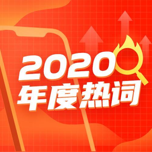 2020年度热词