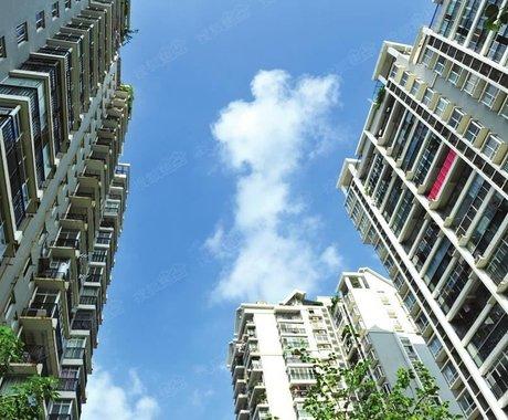 深圳国资委是如何神奇般的存在?