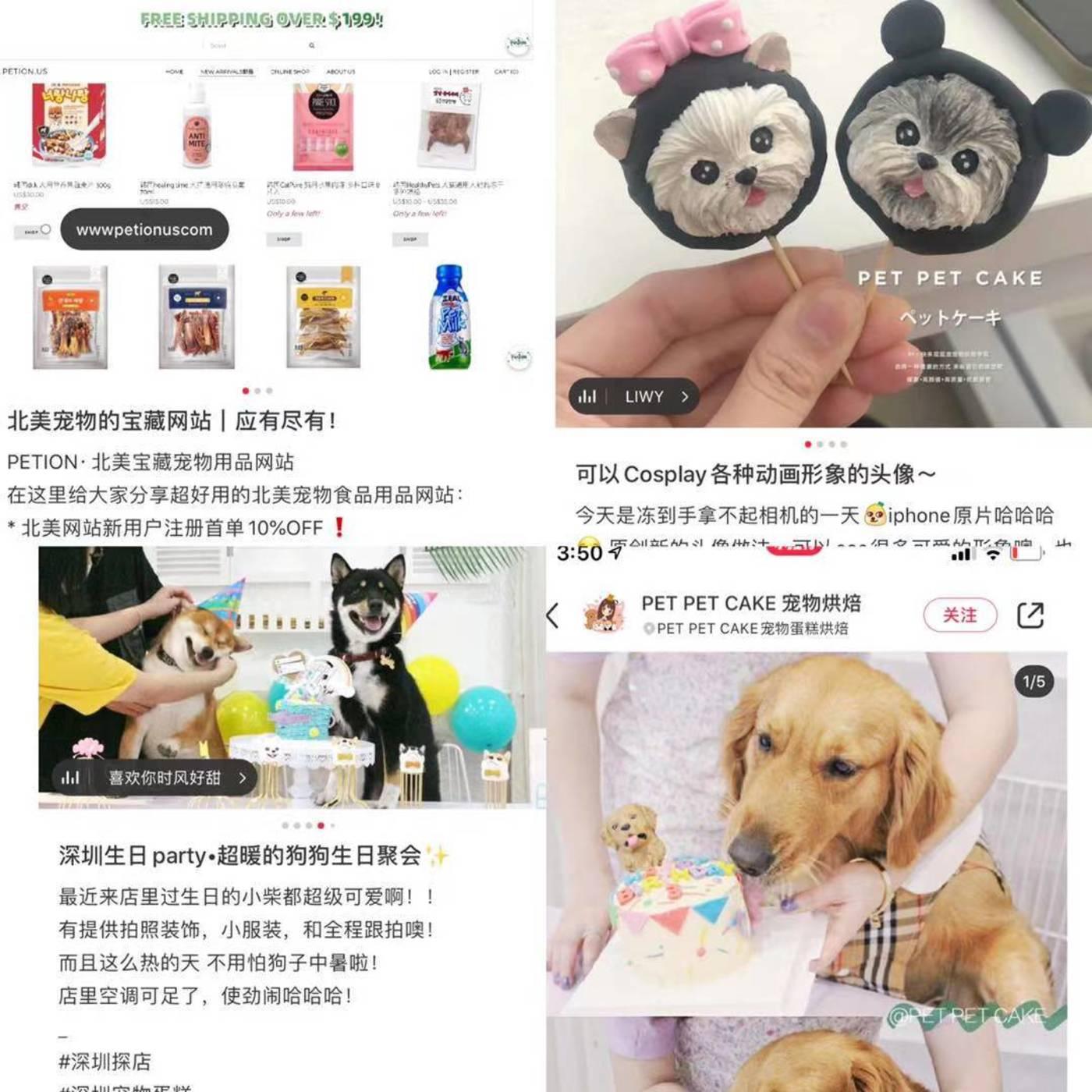 社交媒体上有关宠物食品的讨论异常丰富