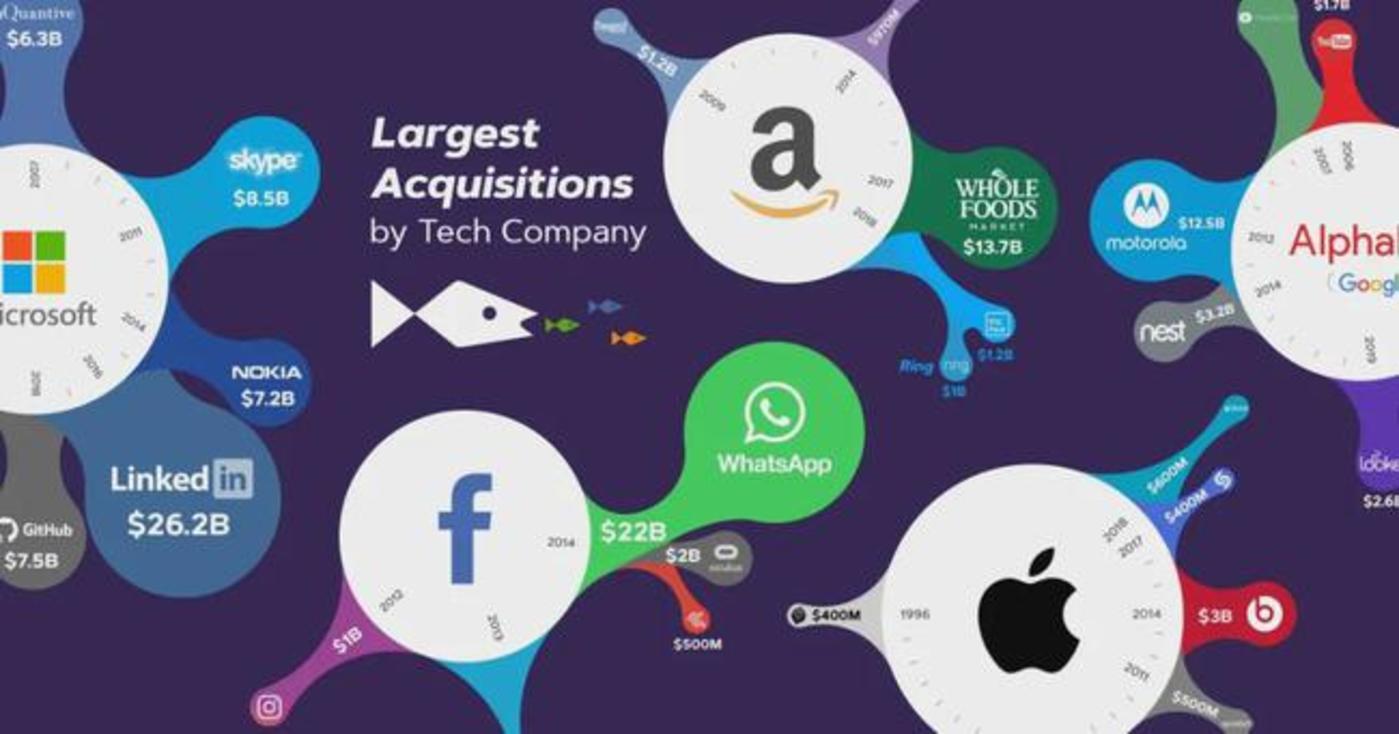 图   一些美国科技巨头(来源:Visual Capitalist)
